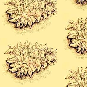 pinecone print  (onionskin)