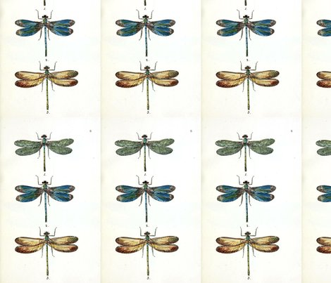 Dragonfly_shop_preview
