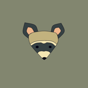 rambunctious raccoon small