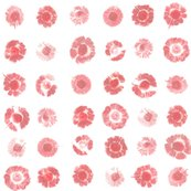 Rrflower-prints-pink_shop_thumb