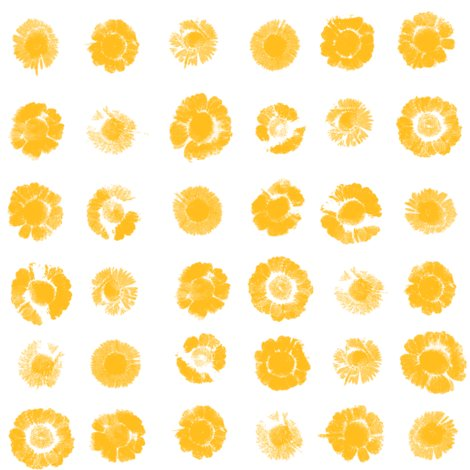 Flower-prints-0goldwhite2new_shop_preview