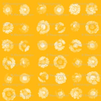 daisy polkadots in white on saffron