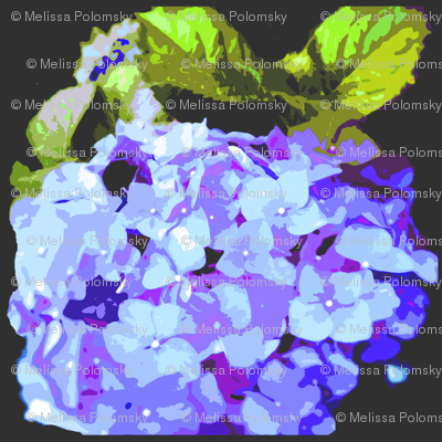 Small Print Blue Hydrangea on Black