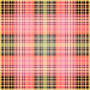 Fall 2013 PLAID