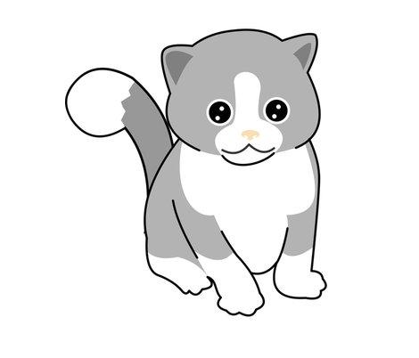 Rcatito_tail_shop_preview