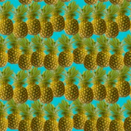 Pineapplepattern-01smaller_shop_preview
