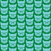 Kitten Green Blue