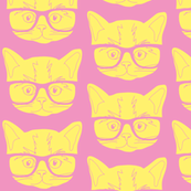 Kitten Pink Yellow
