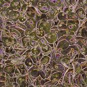 """Hydrangea Moss Rose"""
