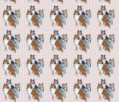 shelties_and_bones fabric by dogdaze_ on Spoonflower - custom fabric