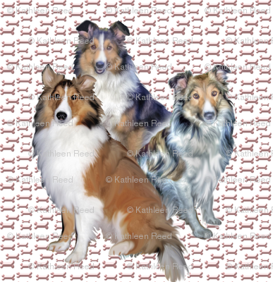 shelties_and_bones