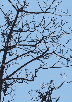 Tree Buds Against Blue Sky