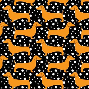 Polka Dachshunds (Black and Orange)