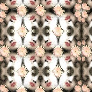 daisyfaces