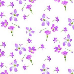 Sweet Shamrock Blossoms - © PinkSodaPop 4ComputerHeaven.com