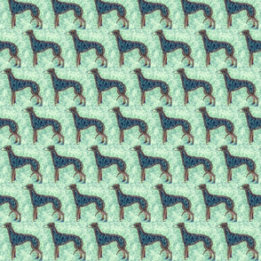 blue greyhound