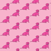 Hot Pink Spotted Wiener Dog Fabric