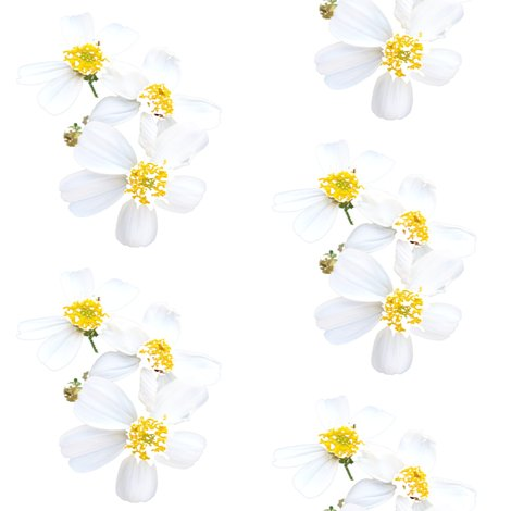 Rrwhitewildflowerhitchhikerweedbypinksodapop_shop_preview