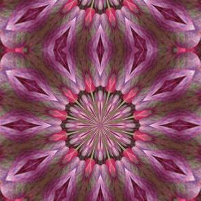 Kaleidescope 0947 v.2
