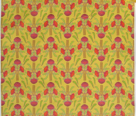Rrrrrnew-spring-waratah-on-butter-yellow_comment_292565_preview