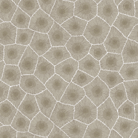 petoskey stone - natural fabric by weavingmajor on Spoonflower - custom fabric