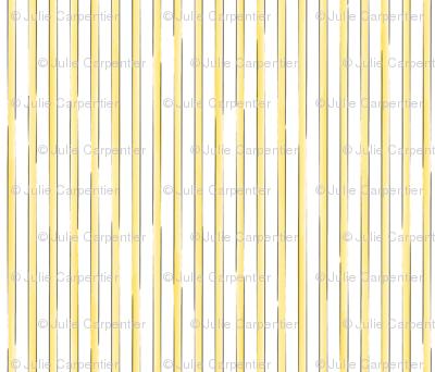 Julie's Colored Lines  Y