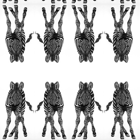 elegant zebra fabric by mezzime on Spoonflower - custom fabric