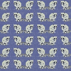 Blue Raccoons