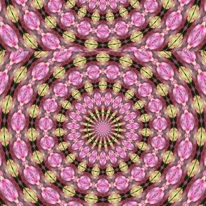Kaleidescope 0947 v.4
