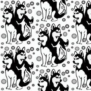 Siberian Husky_with_snowflakes