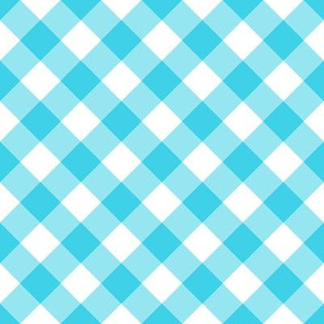 Summer Cottage - Bias Aqua Gingham