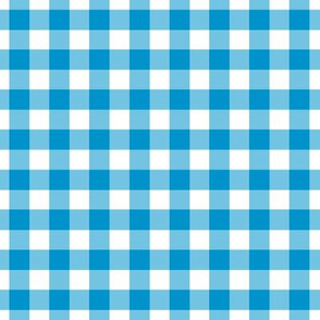 Summer Cottage - Blue gingham