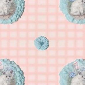 Grumpy_Kitten_2