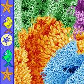 coral reef - big