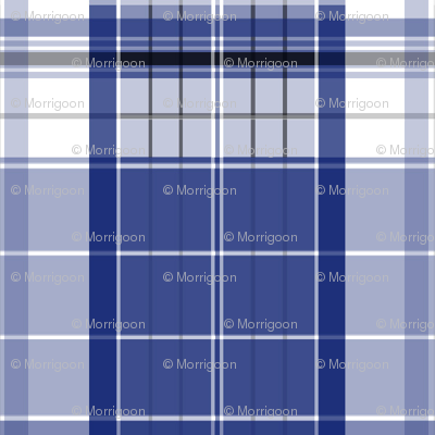 Police Box Plaid 1