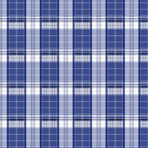 Blue Box Plaid 1