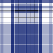Police Box Plaid 2