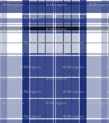 Blue Box Plaid 3