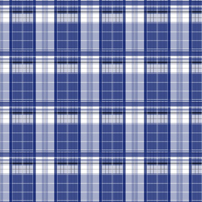 Police Box Plaid 3