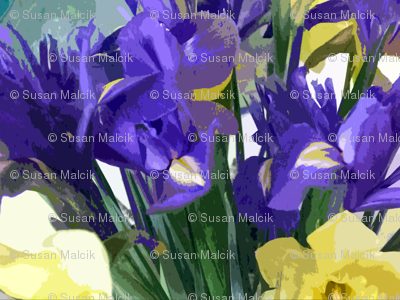Irises and Daffodils Mean Spring