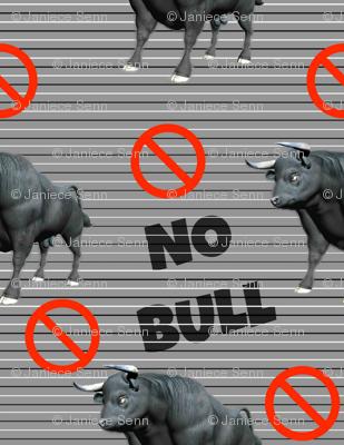 No Bull Zone