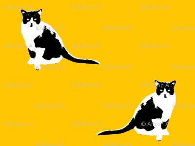 Squeak Cat Fabric