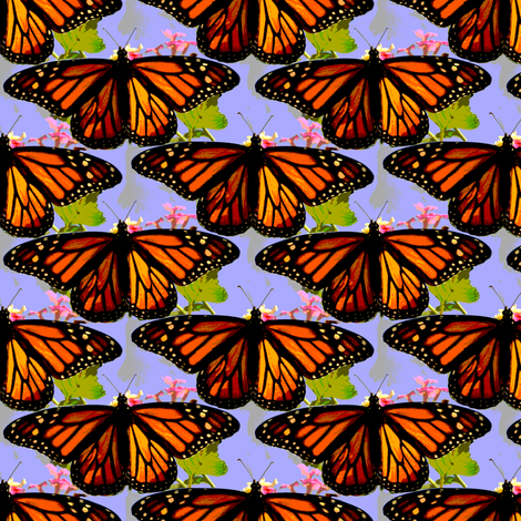 Monarch butterflies fabric by eclectic_house on Spoonflower - custom fabric