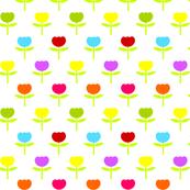 Pretty Spring Tulips