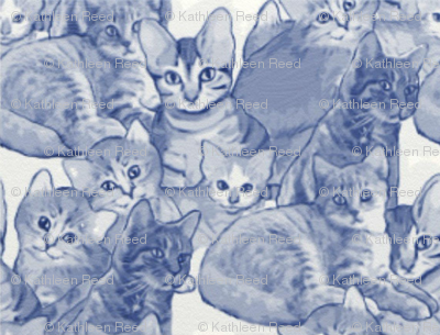blue cats