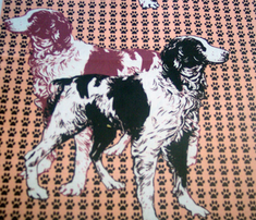 Rbrittany_spaniels_on_pawprints_comment_285249_thumb