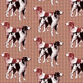 Rbrittany_spaniels_on_pawprints_shop_thumb