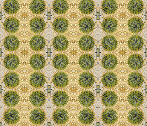 Cactus fabric by kaypea on Spoonflower - custom fabric