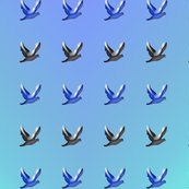 Rmany_birds_in_sky_shop_thumb