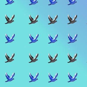many_birds_in_sky